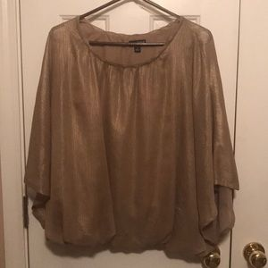 Shimmery Dress Up or Down Top